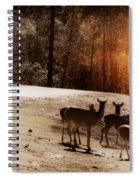 Evening Social  Spiral Notebook