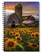 Evening Sunflowers Spiral Notebook