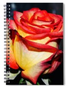 Event Rose 3 Spiral Notebook