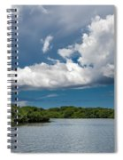 Everglades 0254 Spiral Notebook
