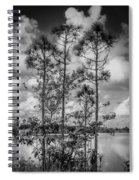 Everglades 0336bw Spiral Notebook