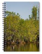 Everglades'  Egrets Spiral Notebook