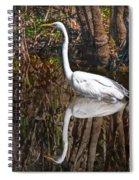 Everglades Spiral Notebook