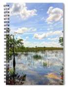 Everglades Landscape 8 Spiral Notebook