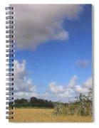 Everglades Landscape Panorama Spiral Notebook