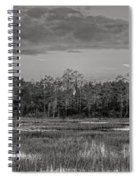 Everglades Panorama Bw Spiral Notebook