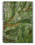 Evergreen Covered In Ice Spiral Notebook
