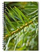 Evergreen Dream By Jrr Spiral Notebook