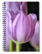 Everlasting Spiral Notebook