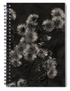 Everlasting Spiral Notebook