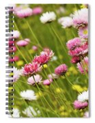 Everlastings Spiral Notebook