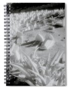 Sublime Fez Spiral Notebook