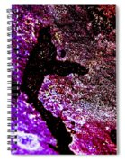 Evolution - Abstract 003 Spiral Notebook
