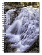 Evolution Waterfall Spiral Notebook
