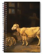 Ewe And Lambs Spiral Notebook