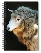 Ewe Are So Beautiful Spiral Notebook