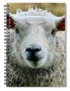 Ewe's Just Fluffy Spiral Notebook