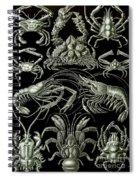 Examples Of Decapoda Kunstformen Der Natur Spiral Notebook