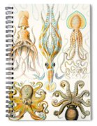 Examples Of Various Cephalopods Spiral Notebook