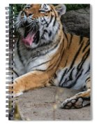 Exhausting Day Spiral Notebook