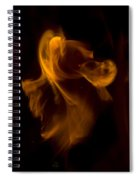 Exorcism Spiral Notebook