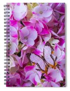 Exotic Butterfly On Hydrangea Spiral Notebook