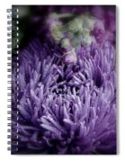 Exotic Purple Flower Two Spiral Notebook