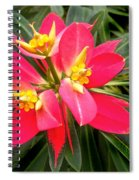 Exotic Red Flower Spiral Notebook