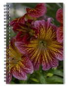 Exotic Spring Flowers Spiral Notebook