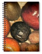 Exotique 4 Spiral Notebook