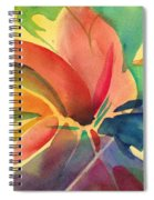 Exploding Lily Spiral Notebook