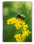 Exploring Goldenrod 2 Spiral Notebook