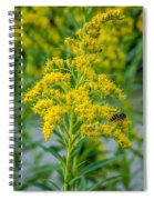 Exploring Goldenrod 3 Spiral Notebook