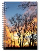 Explosion Of Color In The Sky Spiral Notebook