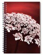 Exquisitely Made Spiral Notebook