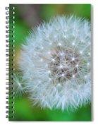 Extra Little Dandelion Wish Spiral Notebook