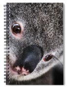 Eye Am Watching You - Koala Spiral Notebook