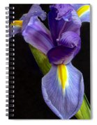Eye-catcher Spiral Notebook
