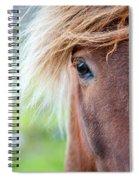 Eye Of A Pony Spiral Notebook