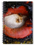 Eye Of Madrone Spiral Notebook