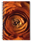Eye Of The Bloom Spiral Notebook