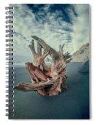 Eye Of The Driftwood Spiral Notebook