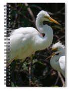 Eye Of The Egret Spiral Notebook