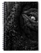Eye Of The Elephant Spiral Notebook