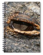 Eye Of The Gator Spiral Notebook