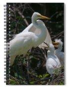Eye Of The Heron Spiral Notebook