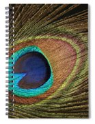 Eye Of The Peacock #5 Spiral Notebook