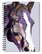 Eye On The Prize Spiral Notebook