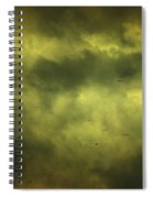 Eye Xix Spiral Notebook