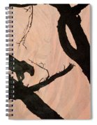 Eyeing The Panther Spiral Notebook